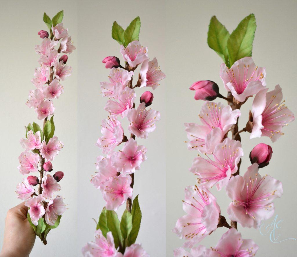 sugar peach blossom and foliage branch