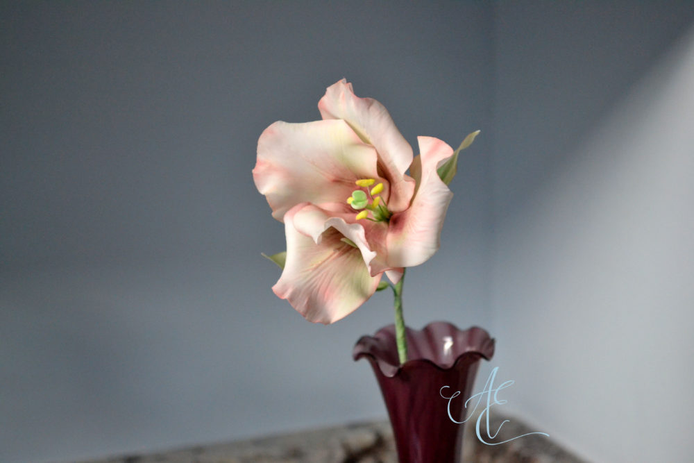 Lisianthus flower close up