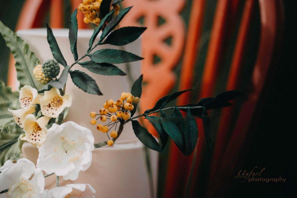 Unfurl Photography IMG_3906small