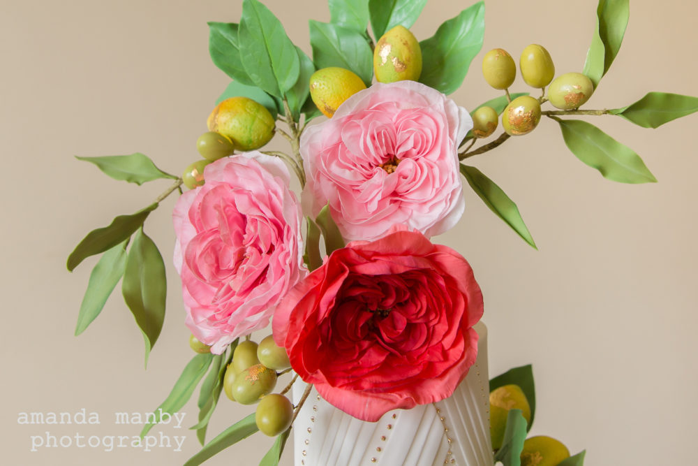Sugar damask roses close-up