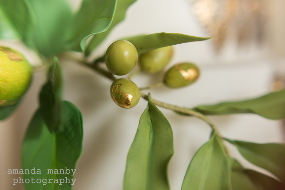 sugar olives and foliage