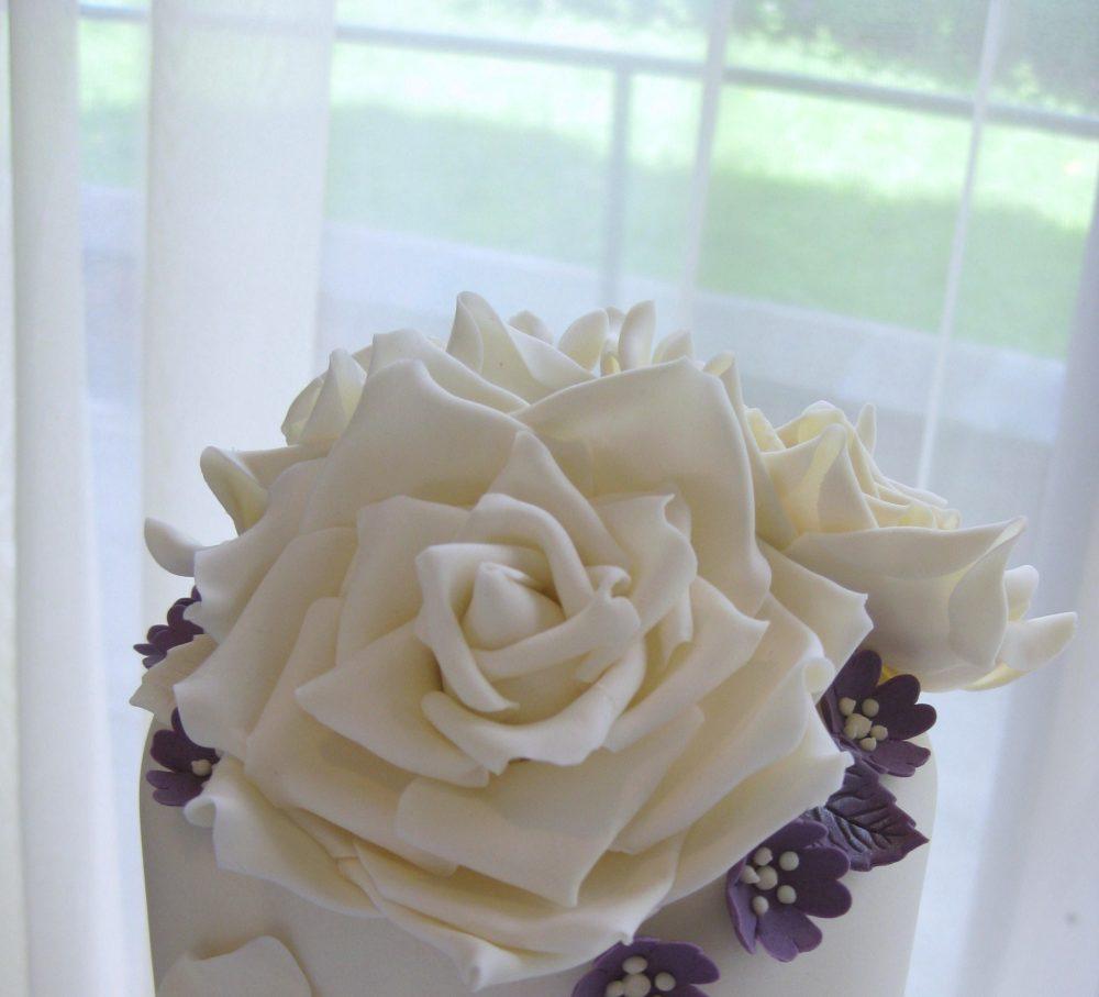 large ivory sugar rose