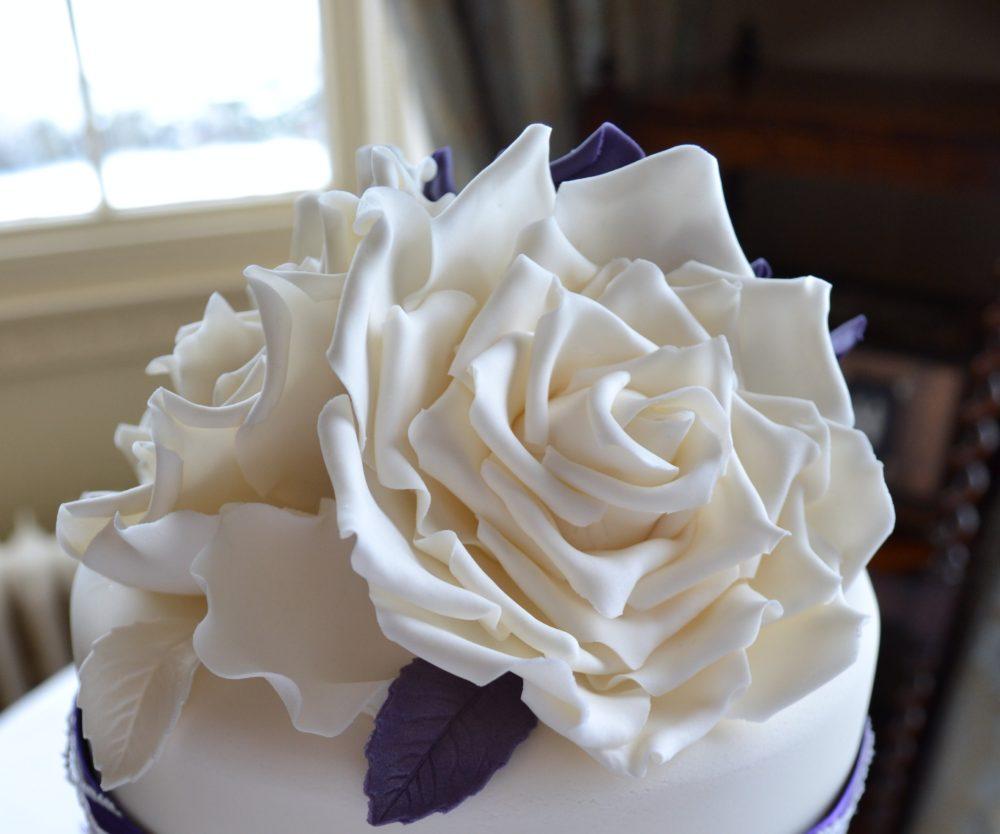 large ivory sugar roses
