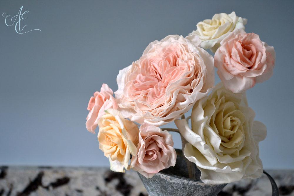 close up david austin and cappucino roses