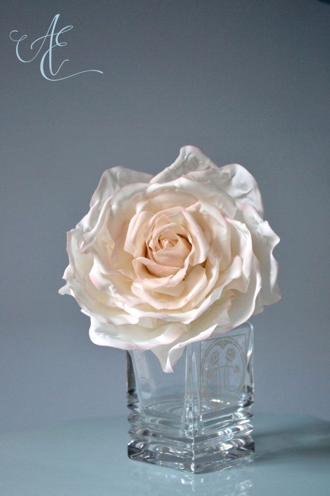 delicate ivory sugar rose