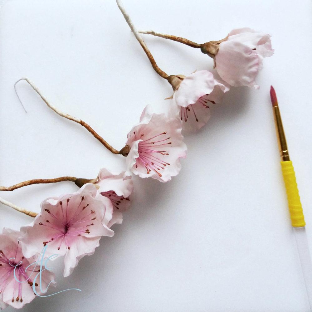sugar peach blossoms