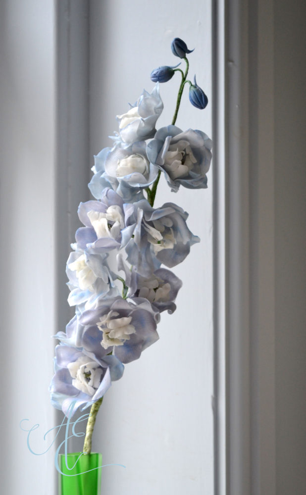 sugar delphiniums
