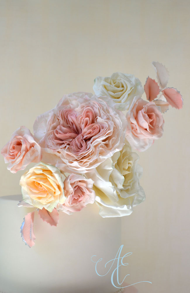 close up blush sugar roses