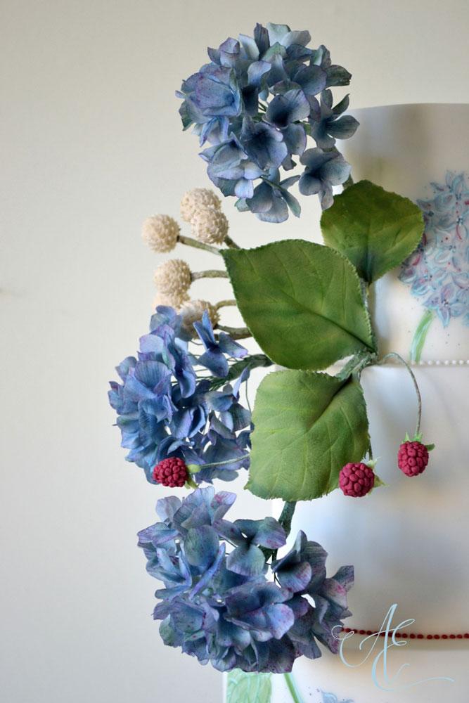 blue sugar hydrangea and foliage close up