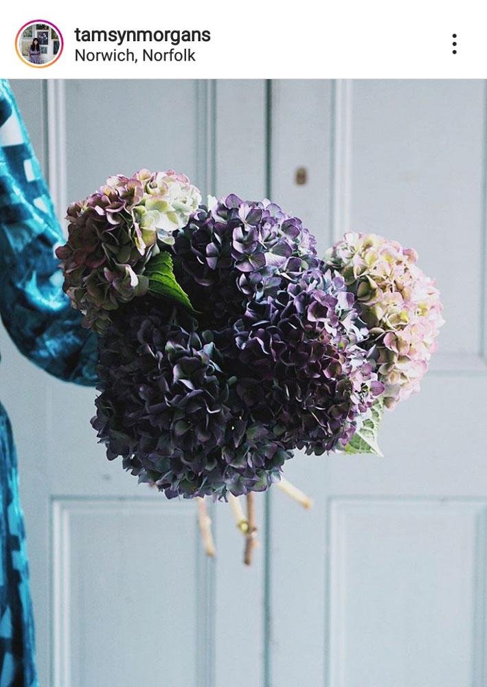 bouquet of hydrangea