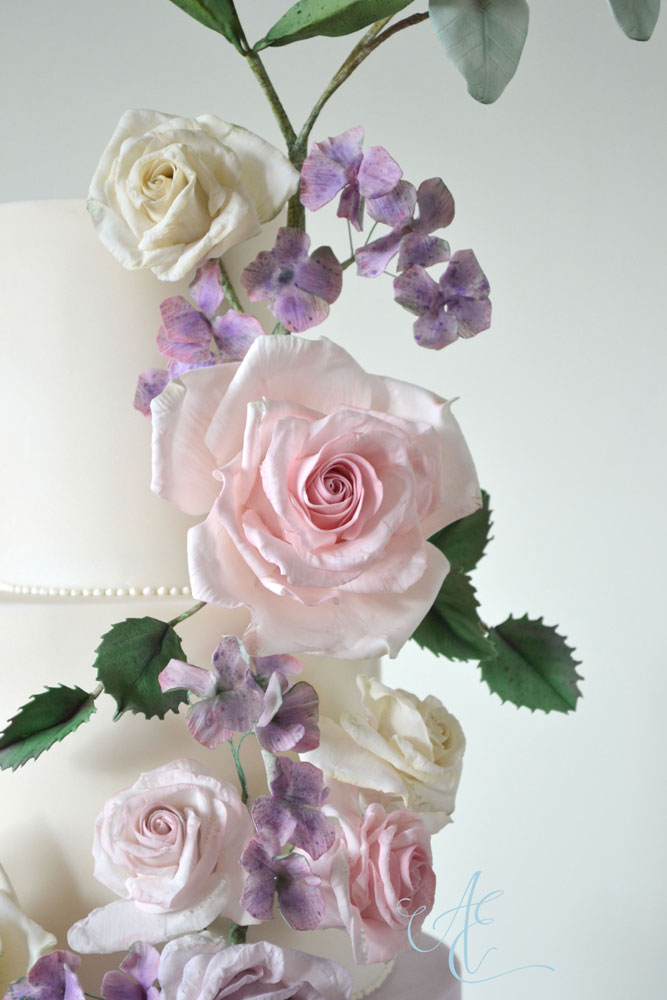 close up sugar roses and hydrangea